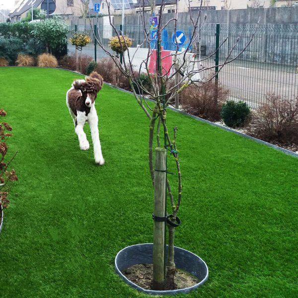 Spelende honden kunstgras